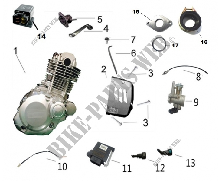 ENGINE COMPONENTS for Mash TWO FIFTY EURO 4 250 2018